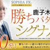 SOPHIA FX 鹿子木健の勝ちパターンシグナル配信を申し込んだのでレビューします